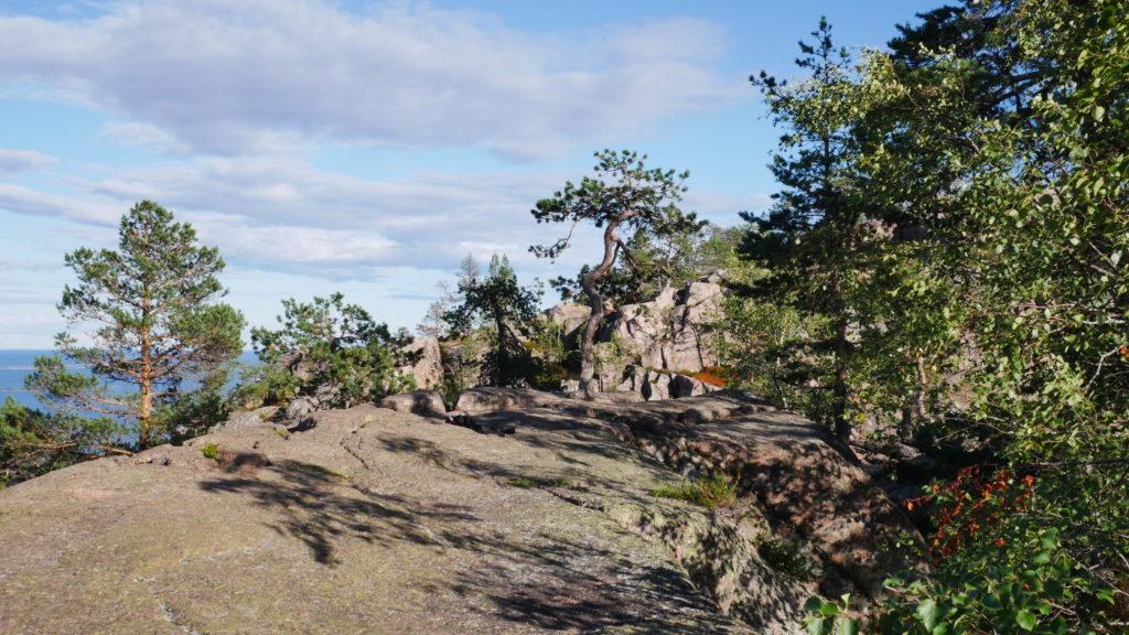 Skuleskogens 3